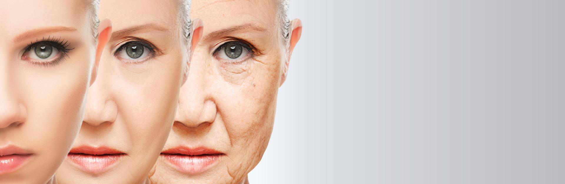 magna-site-banners-envelhecimento-pc (1)